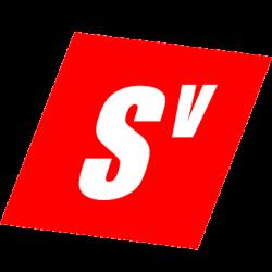 SmartViews